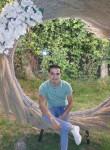 Hamed, 25  , Shibin al Kawm
