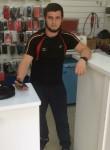 kazik shardan, 25  , Nalchik