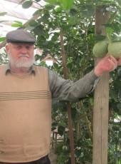 Виктор, 70, Россия, Майкоп