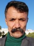 Saydall shairzad, 52  , Ioannina