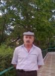 ibragimovhad578