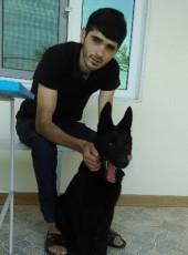 Artur, 28, Armenia, Yerevan