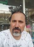 Sezgin, 44  , Baku