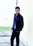 Tebriz, 24  , Prishibinskoye