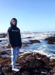 jrel exotics, 19  , San Jose