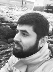 Alan, 29, Russia, Samara