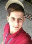 AliAliAliAliAli, 20  , An Najaf