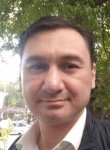 Aliali, 48  , Tashkent