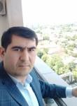 Krolik, 43  , Tashkent