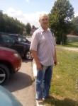 oleg, 51  , Zheleznodorozhnyy (MO)