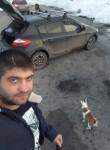 Griffin, 32  , Novokuznetsk