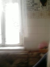Diana, 38, Ukraine, Kamenskoe