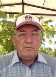 Naip, 65  , Tolyatti