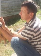 Сергей, 41, Россия, Вязьма