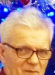 Aleksandr, 69  , Domanivka