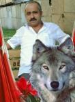 Ali Riza, 44, Tepecik