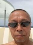cherry, 62  , Hakodate