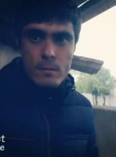 Ali, 31, Kazakhstan, Almaty