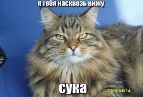 Kirill , 30 - Miscellaneous