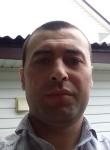 Ilkhom, 31  , Kolchugino