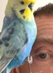 Andrew, 53  , Chesterfield