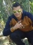 Ahmed, 23  , Al Mansurah