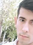 Krasavchik , 25, Qarshi
