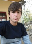 Khamid, 19  , Dushanbe