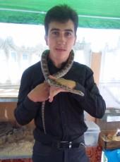 Aleksandr, 28, Belarus, Hrodna