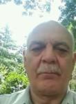Dimitar, 66  , Sofia