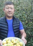 Канат, 39 лет, Алматы