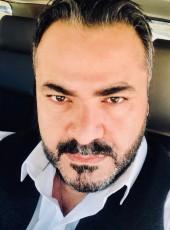 ERTAY, 41, Turkey, Ankara