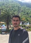 Mehrdad, 29  , Karaj