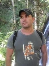 Sergey, 40, Russia, Skhodnya