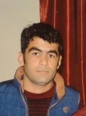 Salam, 28, Azerbaijan, Baku