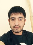 Roman, 27  , Tsibanobalka