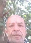 Tsolak, 61  , Yerevan