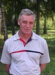 Александр, 56 лет, Рефтинский