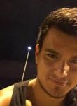 Thyago, 28 лет, Florianópolis