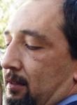 priapos, 54, Bolu