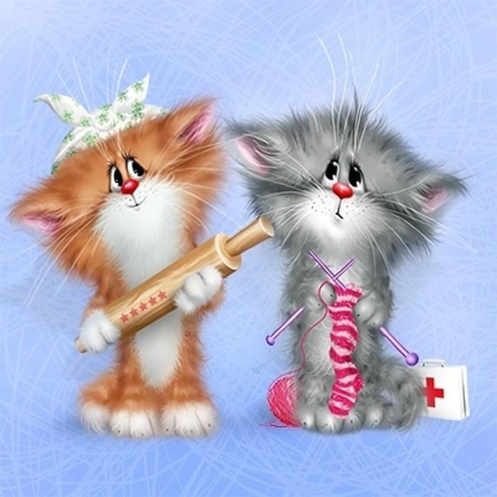 Открытки смешные с кошками