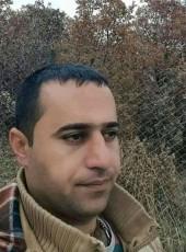 hejar, 31, Iran, Tehran