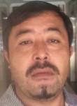 Sardar, 36  , Sharjah