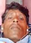 Bunti pal , 30  , Indore