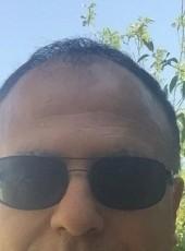 sami, 51, Palestine, Ramallah