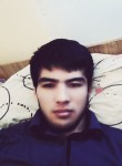 Alijon, 24  , Tirmiz