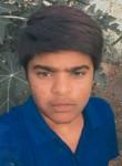 Prakash , 18  , Lalsot