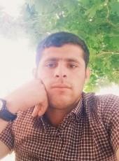 Niko, 27, Azerbaijan, Barda