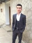 Elvin, 24  , Yeni Suraxani