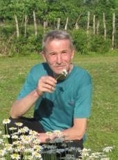 Mikhail, 64, Russia, Saint Petersburg